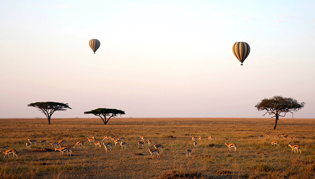 Hot Air Ballooning over the Serengeti